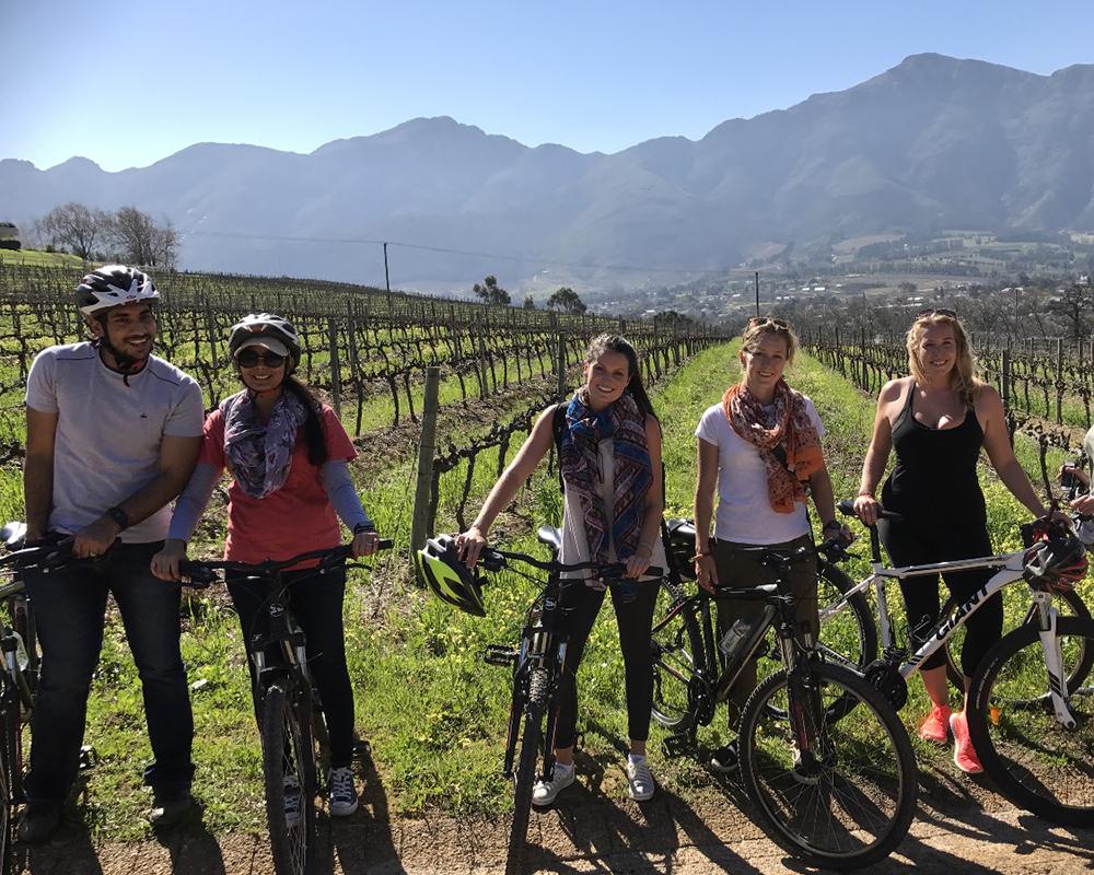 Cycling through Fransschoek